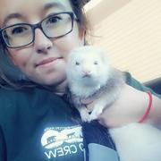 Allison M. - Benton Harbor Pet Care Provider