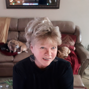 Donna H., Pet Care Provider in Texarkana, TX with 5 years paid experience