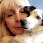 Denise L. W. - Springfield Pet Care Provider