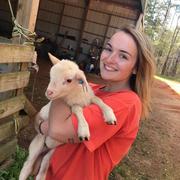 Claire M. - Auburn Babysitter