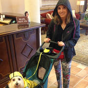 Rachael A. - Boca Raton Pet Care Provider