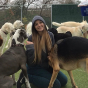 Amanda C., Pet Care Provider in Pinckney, MI with 5 years paid experience