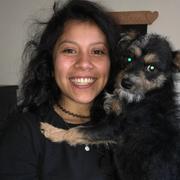 Sylvia V. - Los Angeles Babysitter