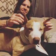 David Q. - Asheville Pet Care Provider