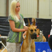 Neely P. - Hooks Pet Care Provider