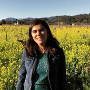 Mariana M. - Santa Clara Babysitter