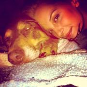 Ciera T. - Placerville Pet Care Provider