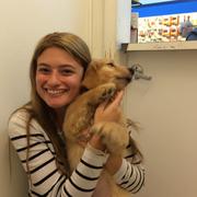 Samantha D. - East Hampton Pet Care Provider
