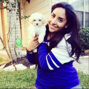Jenny D. - Houston Babysitter