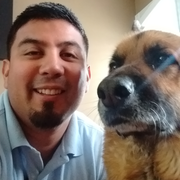 Jose M. - East Moline Pet Care Provider