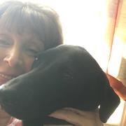 Ronnie D. - Pine Bush Pet Care Provider