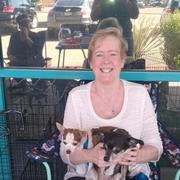 Sandra S., Care Companion in Sun City West, AZ with 2 years paid experience