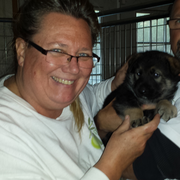 Suzanne H. - Jamestown Pet Care Provider