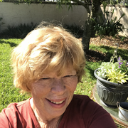 Judy M., Babysitter in Mount Dora, FL with 30 years paid experience