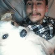 James Tahara T. - Pasadena Pet Care Provider