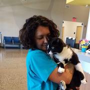 Johanna V. - Roseville Pet Care Provider