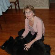 Irina G., Pet Care Provider in Old Bridge, NJ with 1 year paid experience