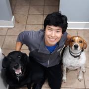 Toleu M. - Saint Albans Pet Care Provider