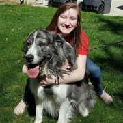 Kourtney S., Pet Care Provider in Brighton, MI with 1 year paid experience