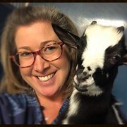Jody K. - Havana Pet Care Provider