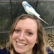 Sarah J. - Manchester Pet Care Provider