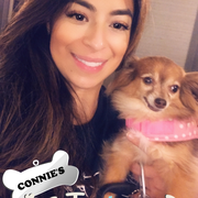 Concepcion A., Pet Care Provider in Chicago, IL with 5 years paid experience