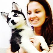 Rebecca S. - Williamsburg Pet Care Provider