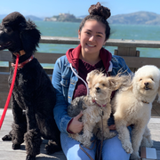 Nadine J., Pet Care Provider in San Jose, CA with 2 years paid experience