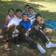 Gerardo Junior R. - Santa Maria Pet Care Provider