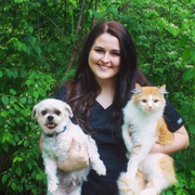 Allie B., Pet Care Provider in Lookout Mountain, GA with 3 years paid experience
