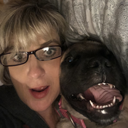 Wendy T. - Linn Creek Babysitter