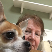Carol D., Pet Care Provider in Rockledge, FL with 1 year paid experience
