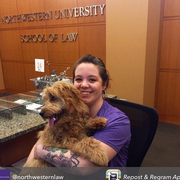 Caitlin L., Pet Care Provider in Chicago, IL 60618 with 1 year paid experience
