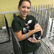 Nina O. - Lakeland Pet Care Provider