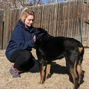 Danielle D., Pet Care Provider in Colorado Springs, CO with 8 years paid experience