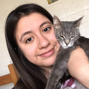 Karen Q., Pet Care Provider in Beloit, WI with 1 year paid experience