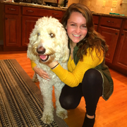 Alison R., Pet Care Provider in Philadelphia, PA with 5 years paid experience