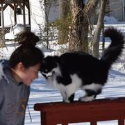 Sophi K. - Herndon Pet Care Provider