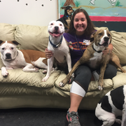 Taylor L. - Storrs Mansfield Pet Care Provider