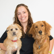 Jennifer M. - Cromwell Pet Care Provider