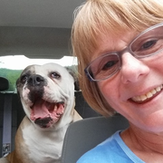 Sandra B. - Allentown Pet Care Provider