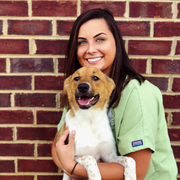 Abigail M. - Gray Court Pet Care Provider