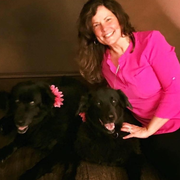 Krissy M. - Webster Pet Care Provider