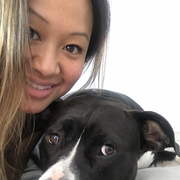 Sophia H., Pet Care Provider in New York, NY with 4 years paid experience