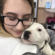 Corrin C. - Hagerstown Pet Care Provider
