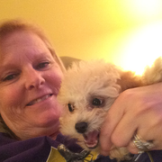 Brenda A., Pet Care Provider in Port Saint Lucie, FL 34986 with 30 years paid experience