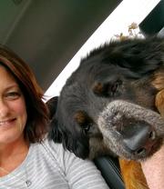 Shauna L. - Rochester Pet Care Provider