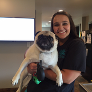 Janine B., Pet Care Provider in Raleigh, NC with 10 years paid experience
