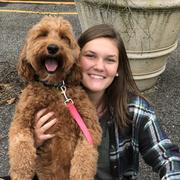 Anna K., Babysitter in Bernardsville, NJ with 3 years paid experience