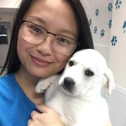Micky P. - Silver Spring Pet Care Provider